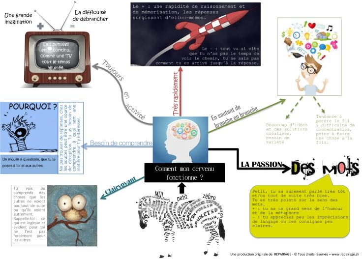 Microsoft Word - Infographie HP-cerveau.docx